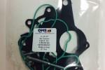 Ремкомплект OMS 11-23-357 60.182 023G145209C F009D00069 03G145209C